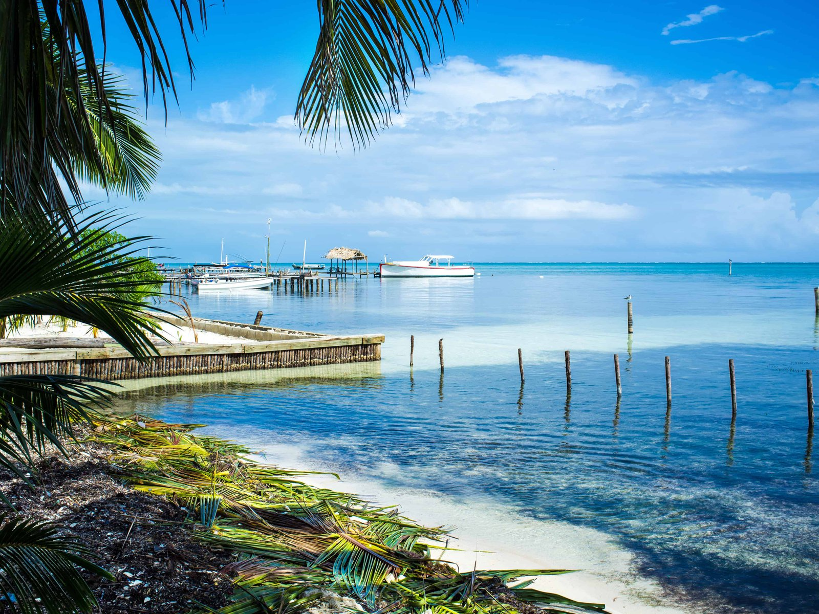 homepage-belize-small