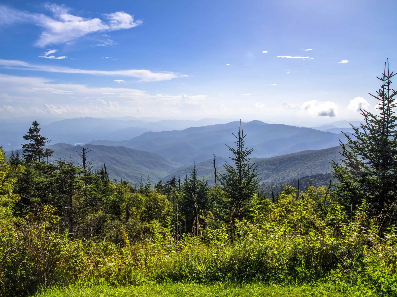 homepage-smoky-mountains-small